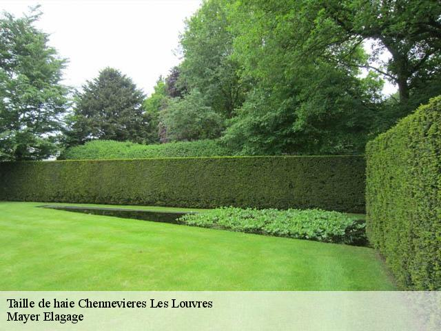 Taille de haie  chennevieres-les-louvres-95380